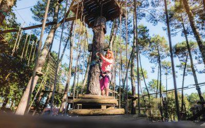 Prenons de la hauteur au bois Farjon