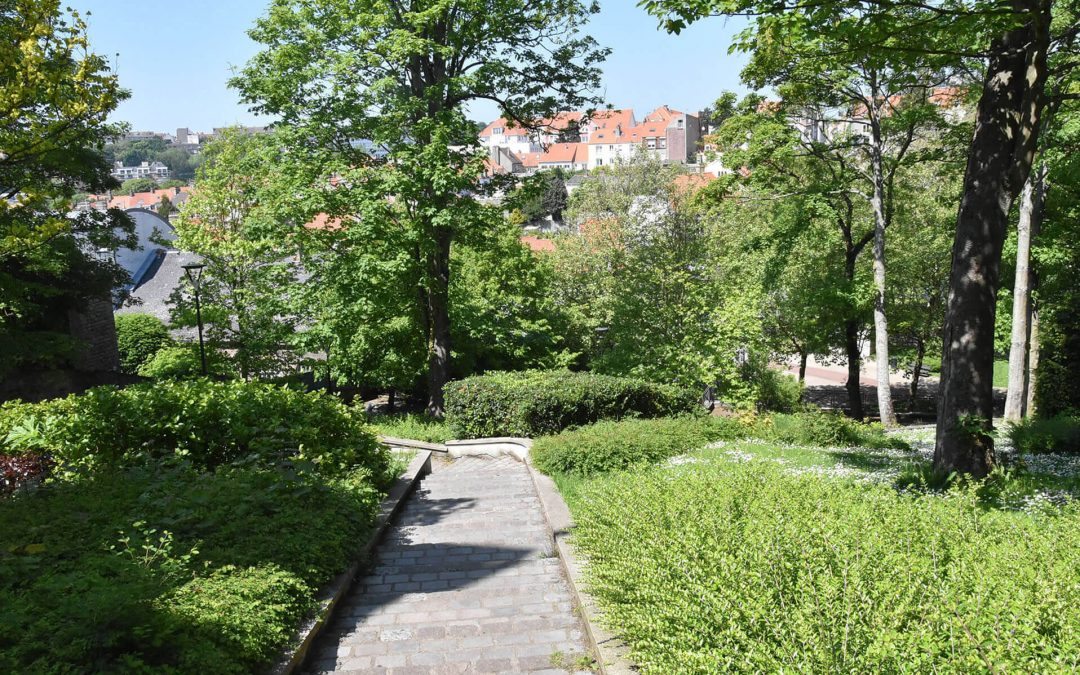 Le jardin Bucciali